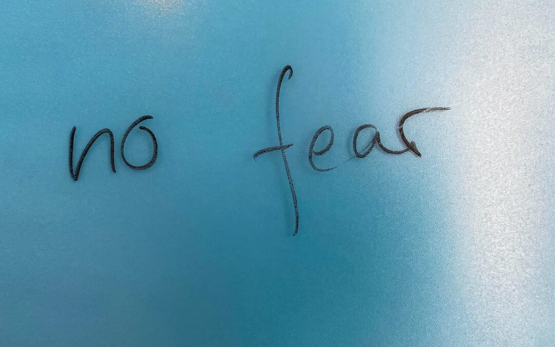 Reasons Not To Fear 1