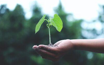 Tools For Spiritual Growth 3